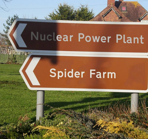Spiders+nuclear reaction = ???